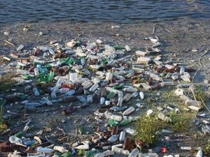 Take It In: Plastic finds its way into our bodies
