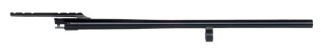 Eupaeazost6zsprk0lp7