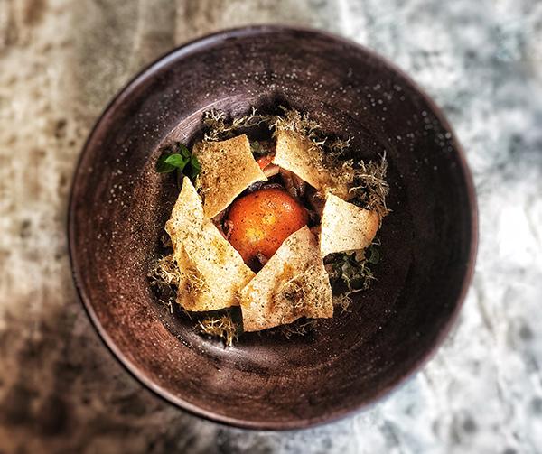 Foraged mushrooms, confit egg yolk, reindeer moss, sourdough cracker
