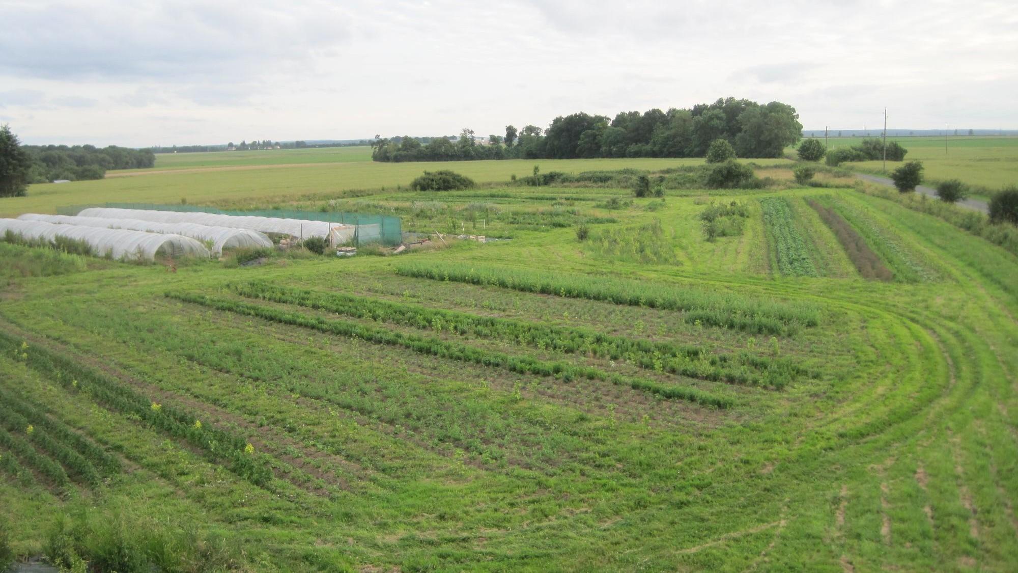 Représentation de la formation : Analyser un projet agricole pour mieux l'accompagner (présentiel)