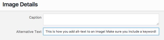 alt-text.png