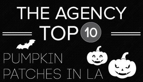 Top10_PumpkinPatch