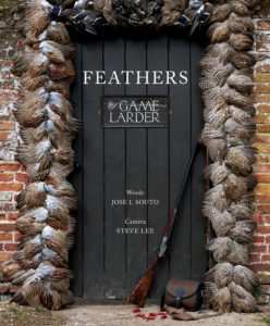feathers-book-coverweb