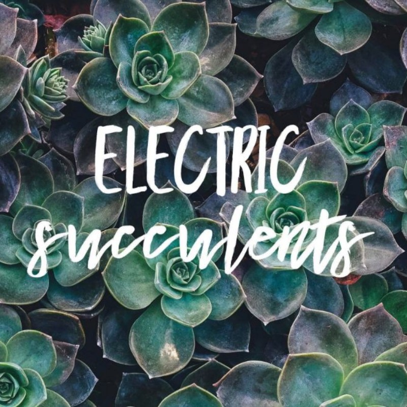 Electric Succulents