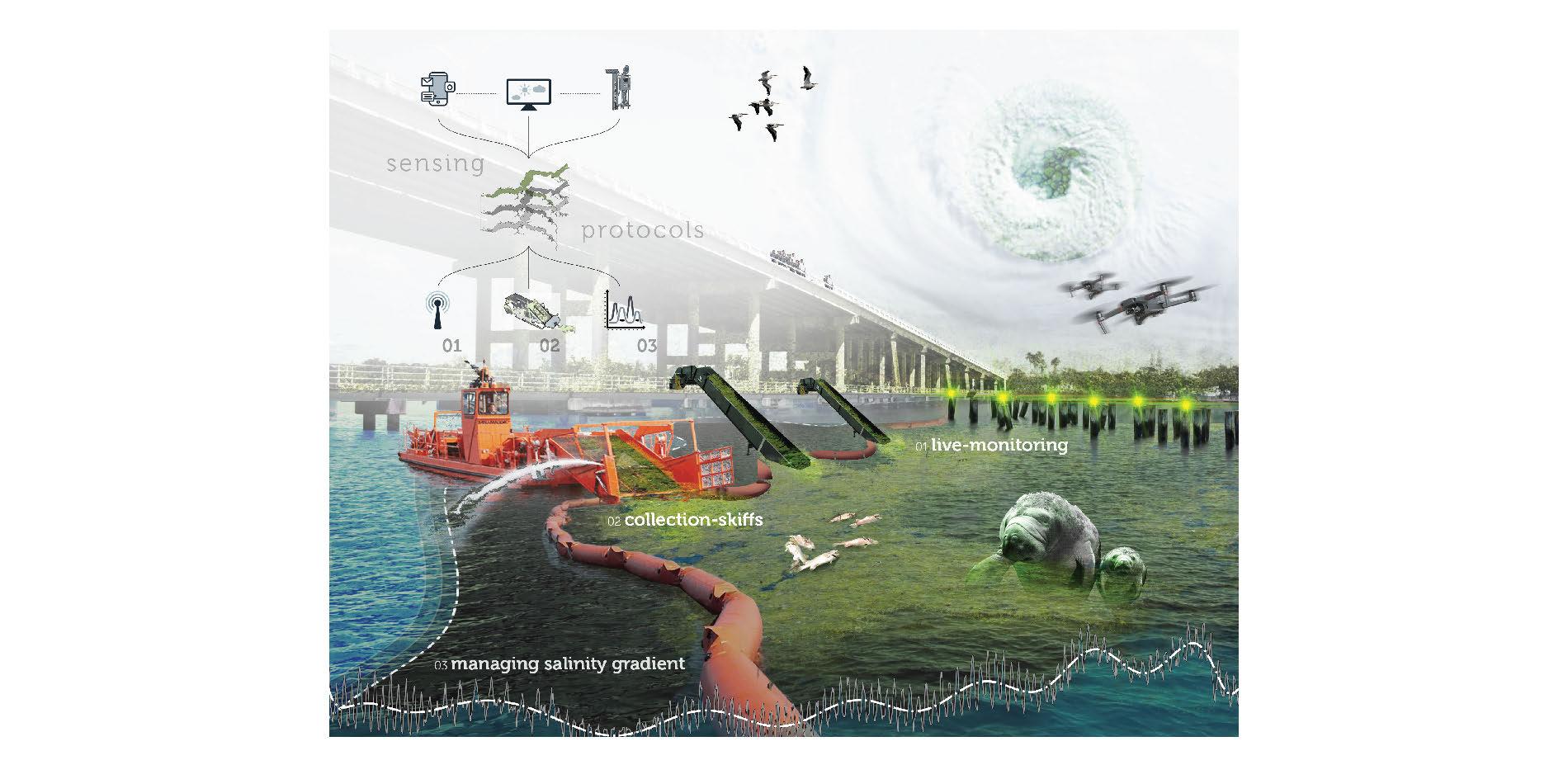 Sensing Protocols - Estuary Mitigation Strategies