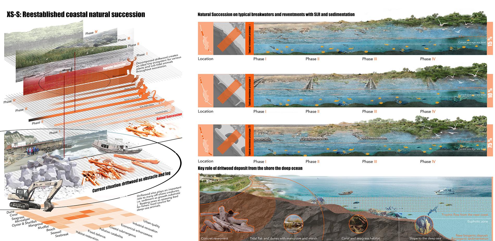 XS-S: Reestablished Coastal Natural Succession