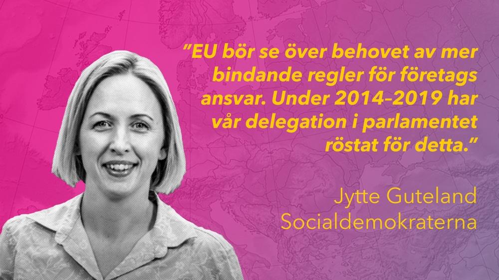 Jytte Guteland är en av Socialdemokraternas sittande EU-parlamentariker och kommer att fortsätta agera blåslampa gällande företags ansvar.