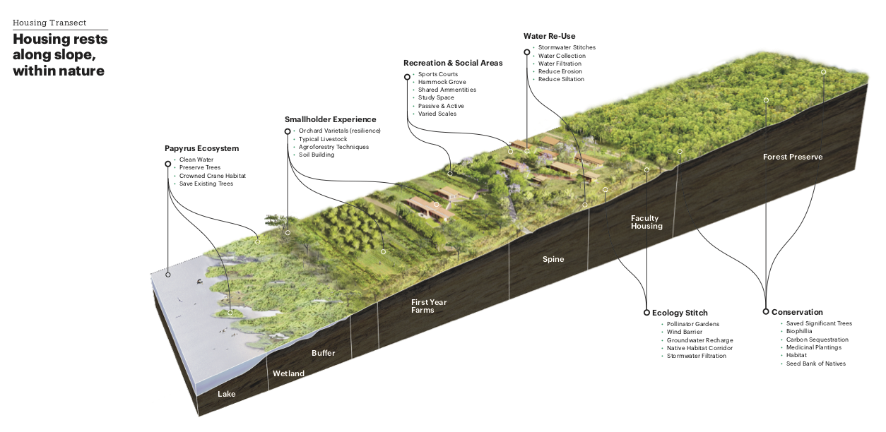 Housing Transect