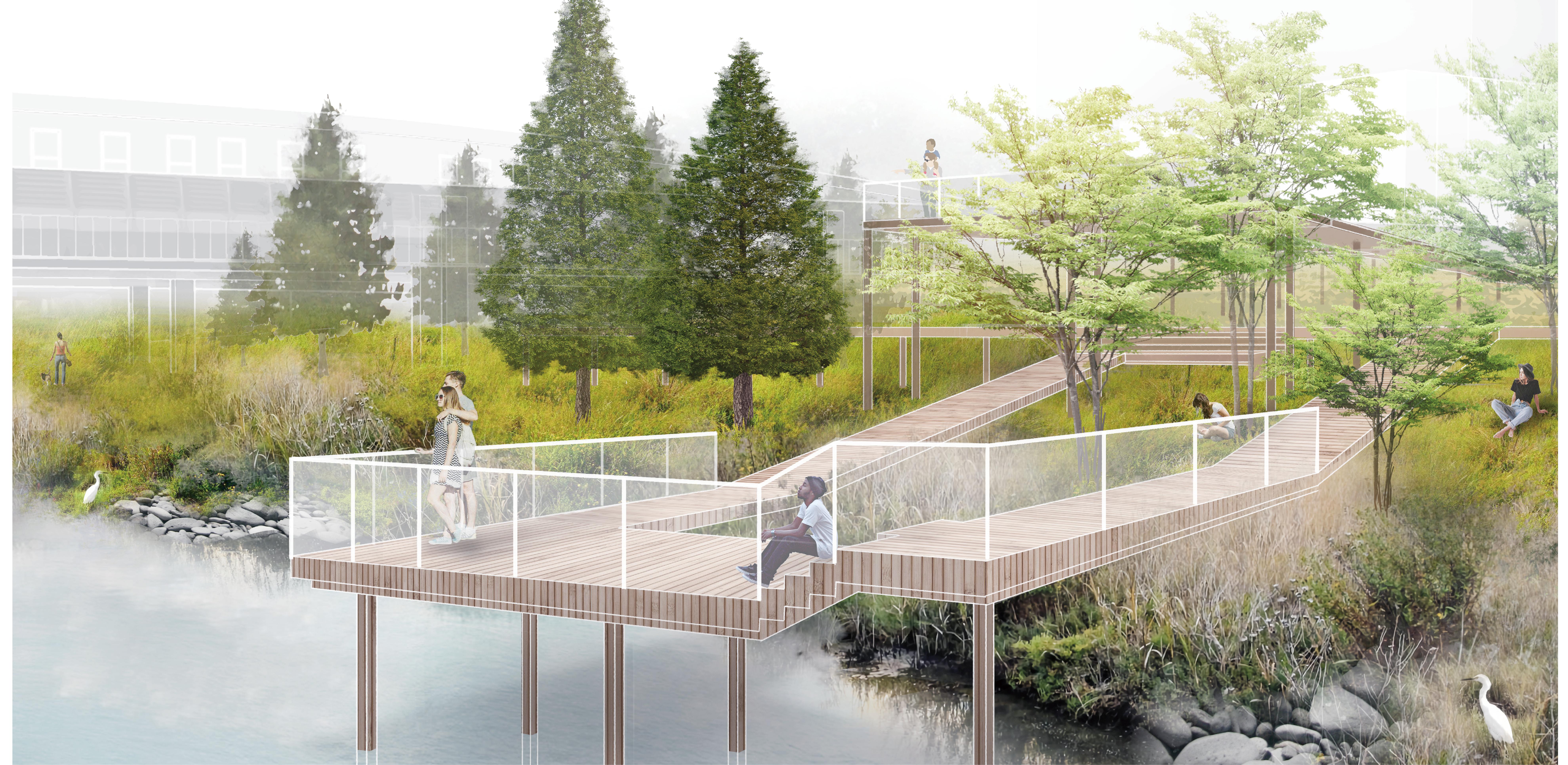 Wetland Platform Perspective