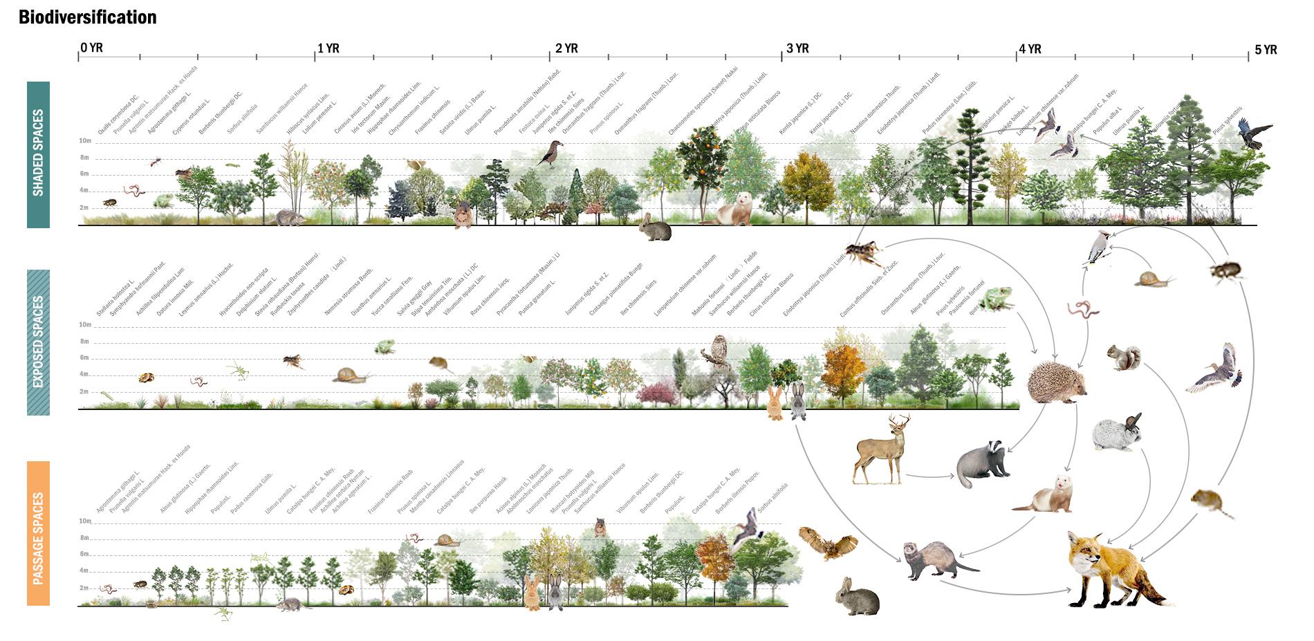 Biodiversification