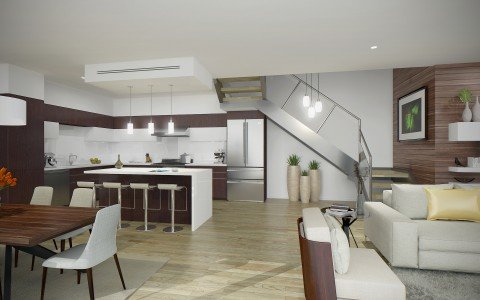 Pacific Star Living-Kitchen
