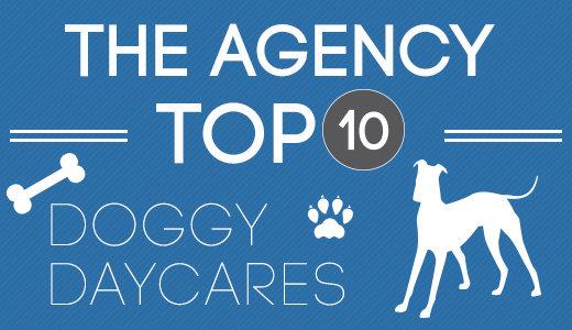 Top10_DOGGY