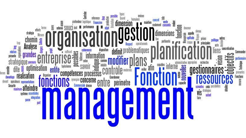 Représentation de la formation : Stratégie de prise de poste de manager - Eric Blanc