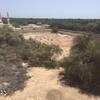 General view, Jewish Cemetery, Sohar, Oman, 2017. Photo courtesy Murray Meltzer.