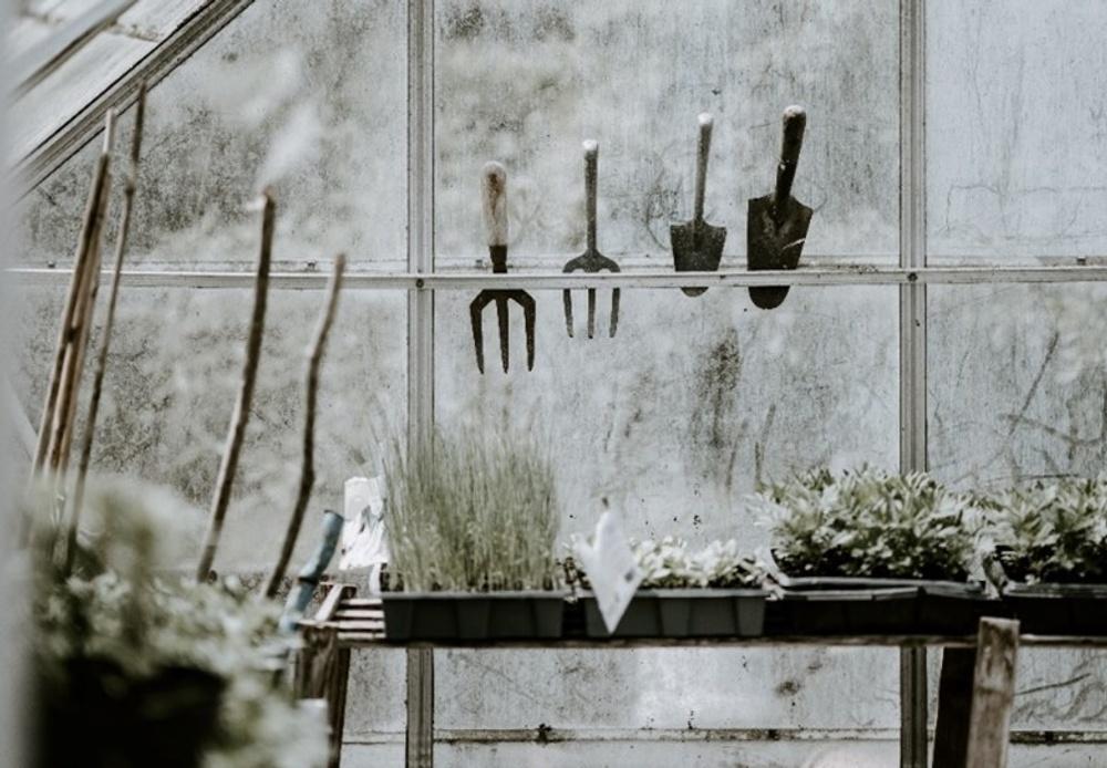 Spring gardening and DIY
