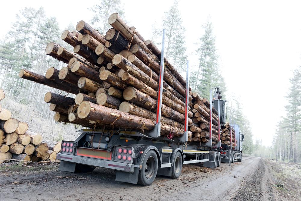 Timmerbil på väg