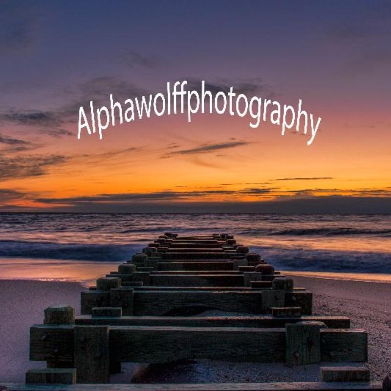 alphawolffphotography