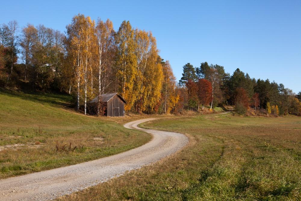Grusväg på landsbygden på hösten.