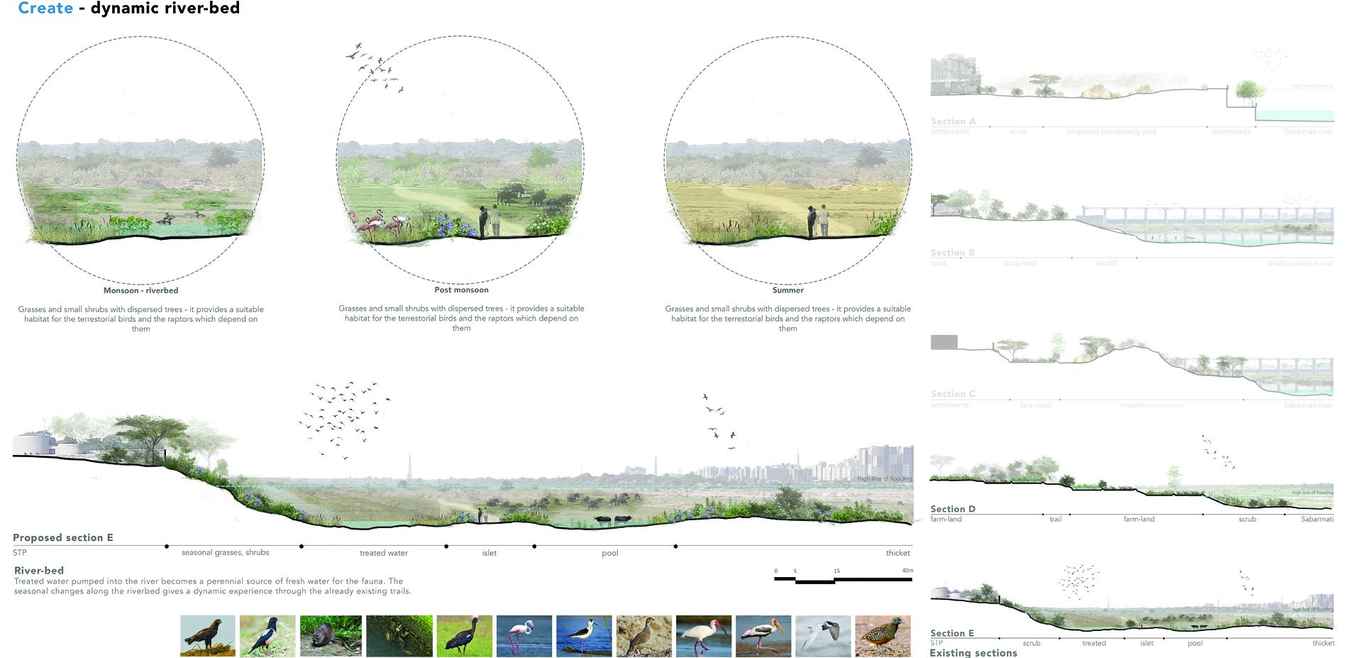 Create - dynamic riverbed