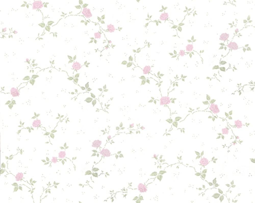 357-04 Desirèe rosa