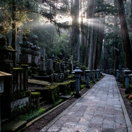 Japan: Land of the Samurai
