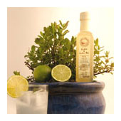 Lime and lime mint cordial
