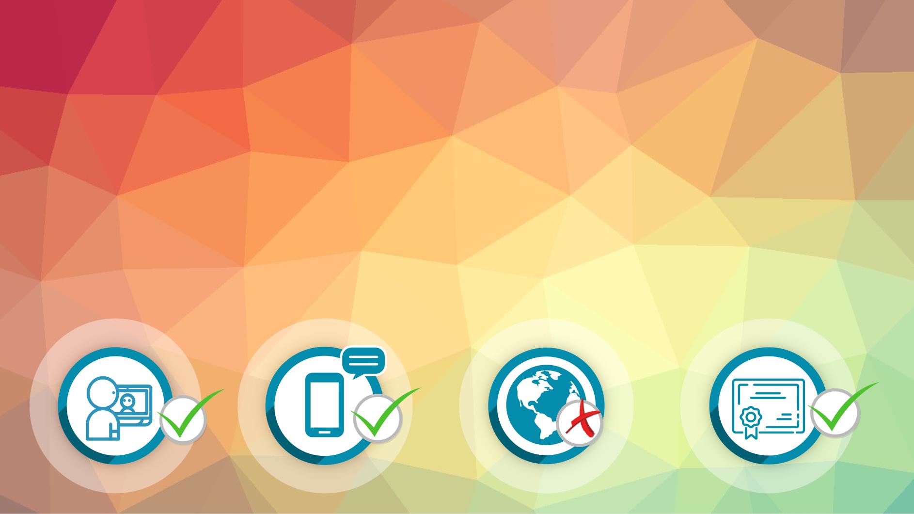 Représentation de la formation : Néerlandais Certification BRIGHT LANGUAGE : 100% cours particuliers en visio (30h) + e-learning