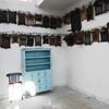 Interior 5, Synagogue Keter Torah, Sousse, Tunisia, Chrystie Sherman, 7/17/16
