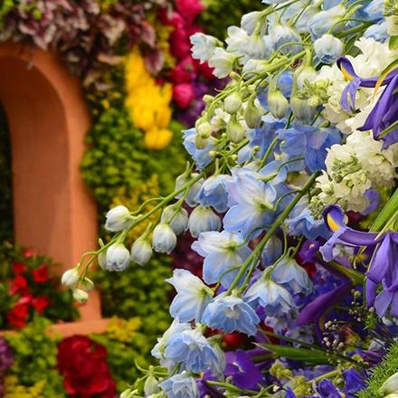 Chelsea Flower Show | BRT