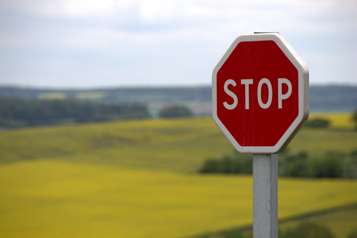 Summer Koester, Writer The Belladonna: We Must Put an End to Government Overreach, Which is Why I'm Burning Down These Stop Signs Link Thumbnail | Linktree
