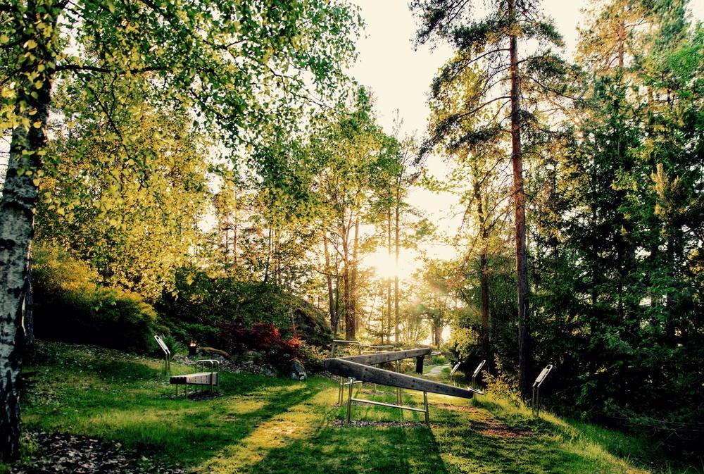Utomhusgym i eftermiddagssol. Omgivet av grönska och solen som strilar genom träden.