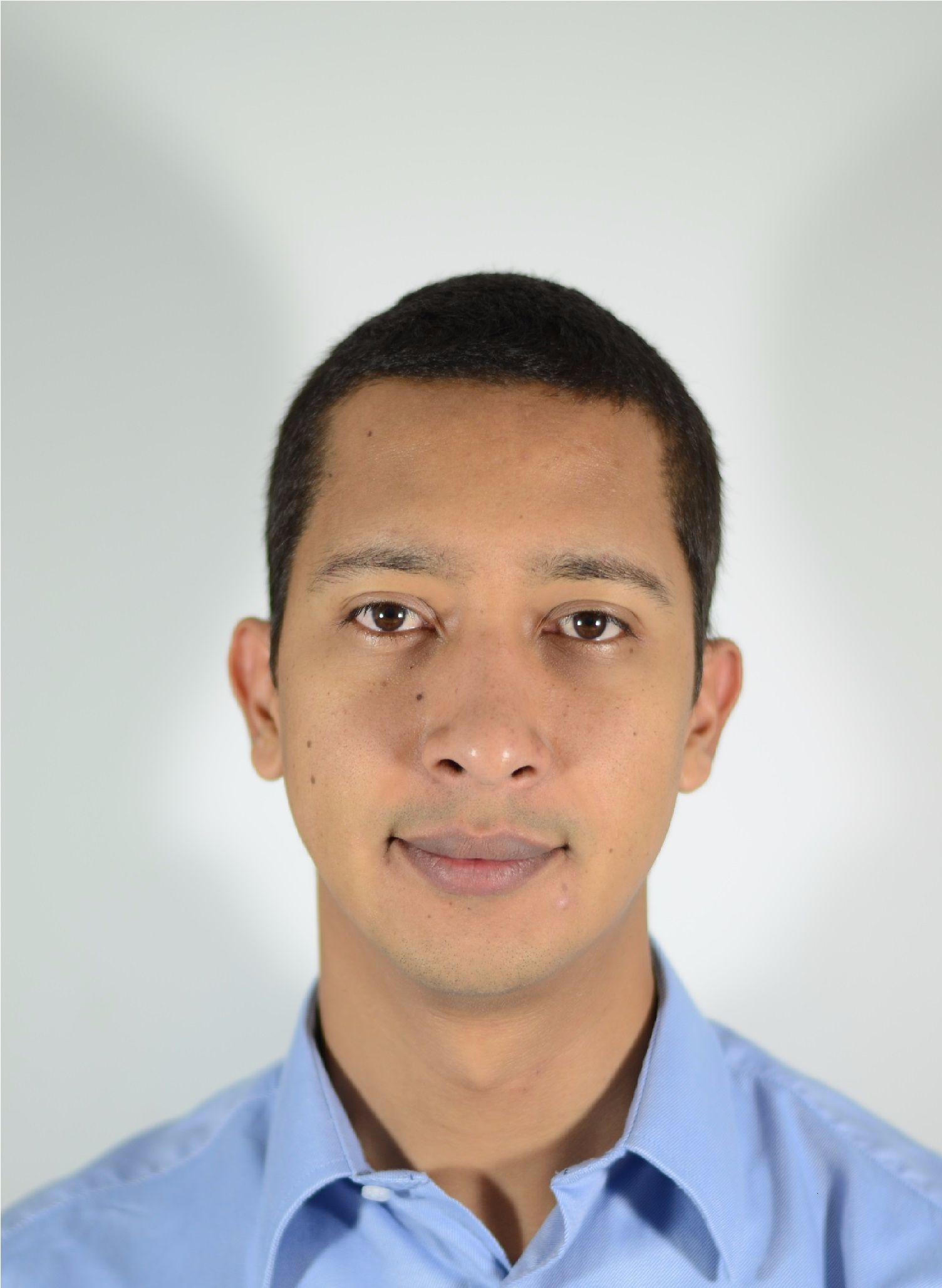 Java stream mentor, Java stream expert, Java stream code help