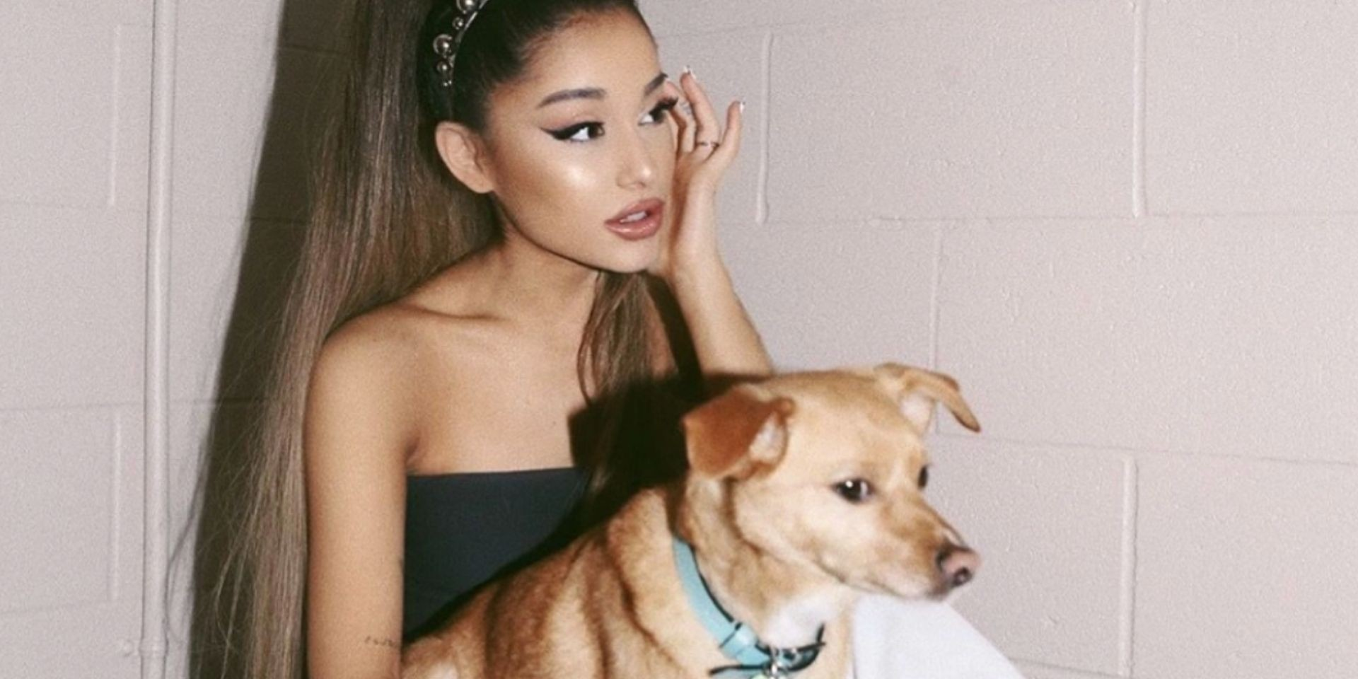 Ariana Grande launches new animal rescue shelter in Los Angeles