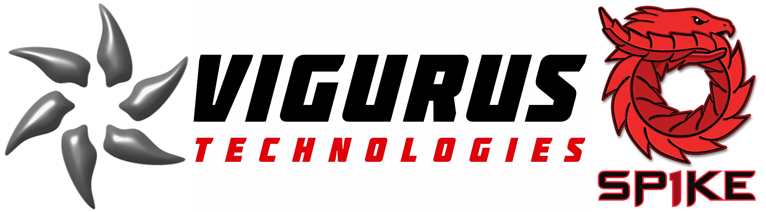 Vigurus Technologies Inc.