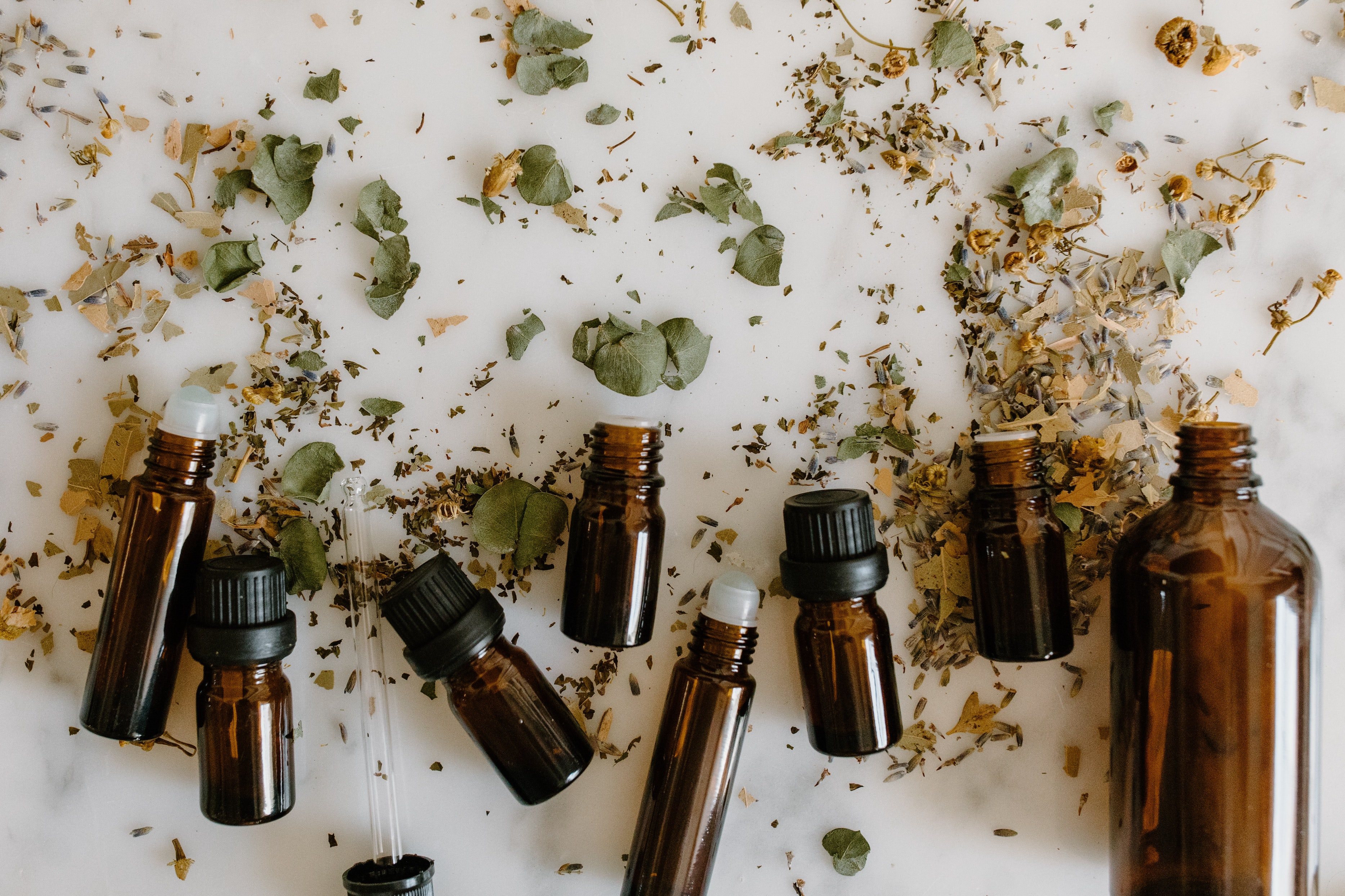 Secret Beauty Club What Are the Best Natural Oils to Use on My Face?