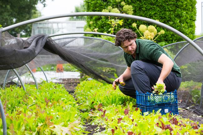 Gardener John Driscoll