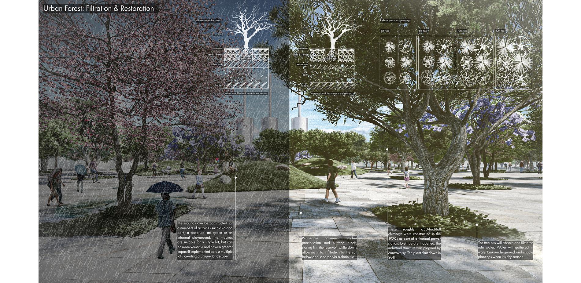 Urban Forest: Filtration & Restoration