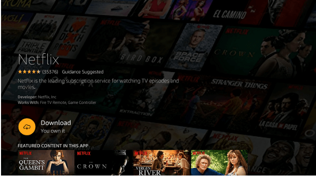 How to install Netflix on Firestick and Watch it 7