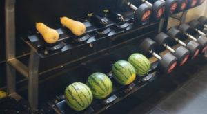 vegetable-gym