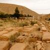 Ghardaya Cemetery, Cemetery Graves (Ghardaya, Algeria, 2009)