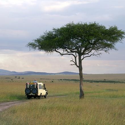 Premium Kenya & Southern Africa In Depth