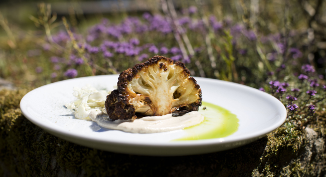 Roasted Ashcroft's cauliflower, tarator