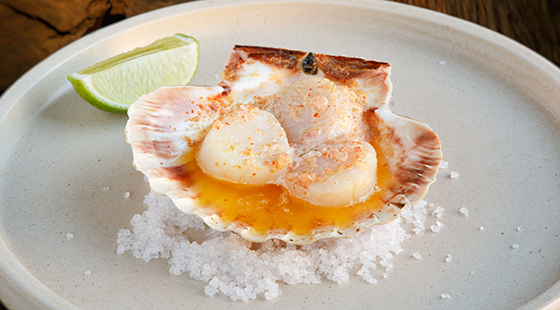 Baked scallops in the shell, coral butter