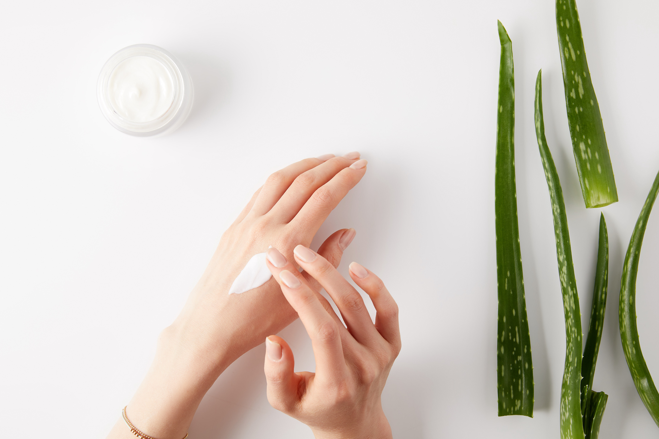 More Naturals The Benefits of Using Aloe Vera in Your Day-to-Day