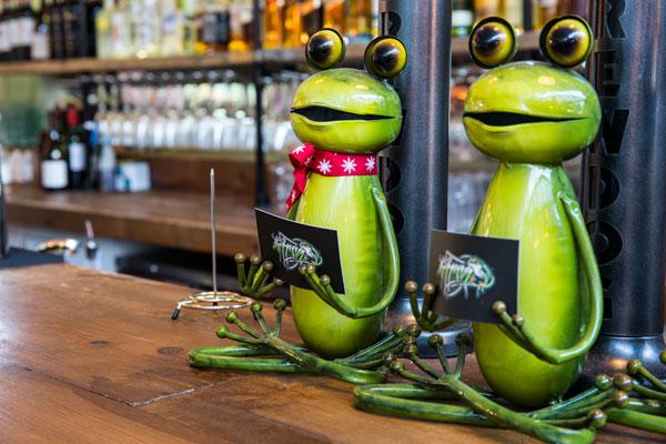 Inside the Frog