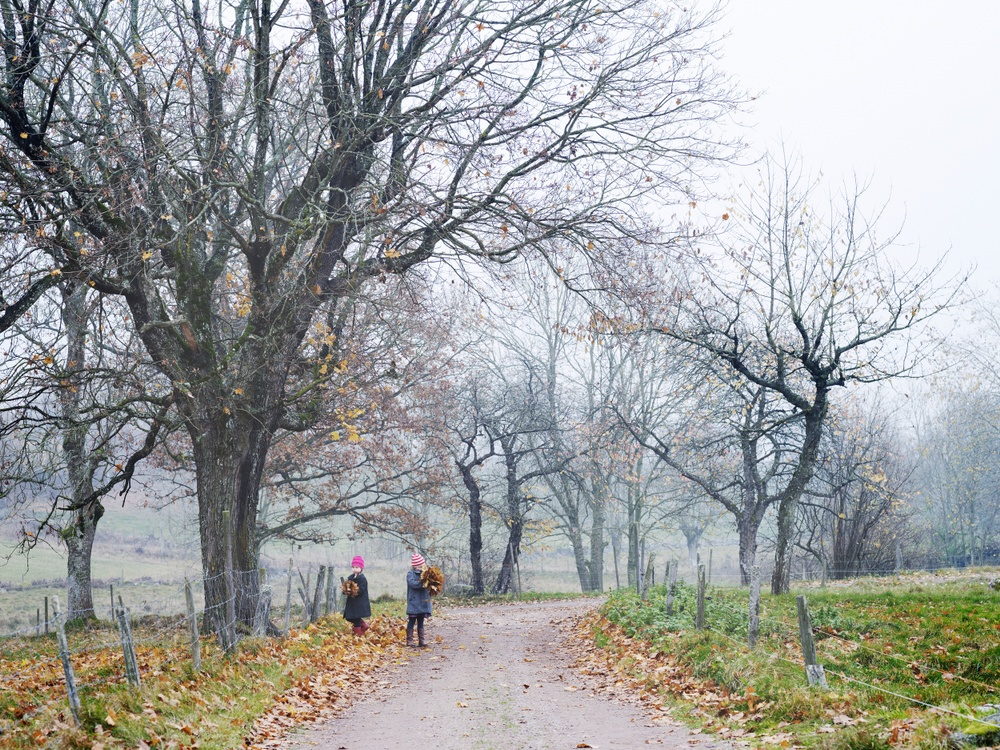 Två flickor som leker med fallna löv vid en grusväg