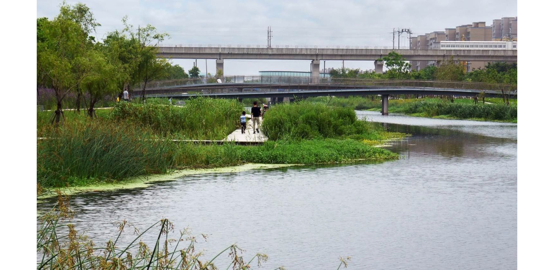A RADICAL TRANSFORMATION IN WATER QUALITY
