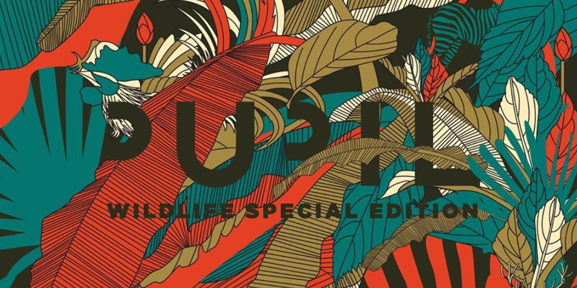 A special edition of Pupil's 2007 album, Wildlife, is now on streaming services – listen