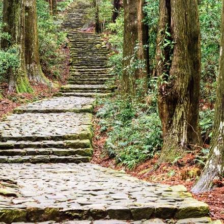 Kumano Kodo self-guided walking (5 days)