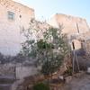 Exterior 5, Synagogue, Tamezret, Tunisia, Chrystie Sherman, 7/13/16